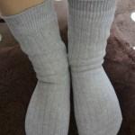 今日の冷えとり靴下(綿の太リブカバーソックス)